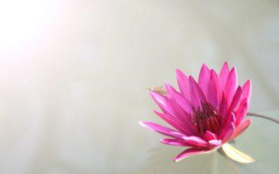 Hogyan alakítsd ki magadban azt a hozzáállást, hogy meg tudd bocsátani magadnak, ha hibázol, vagy valamit nem tudsz?